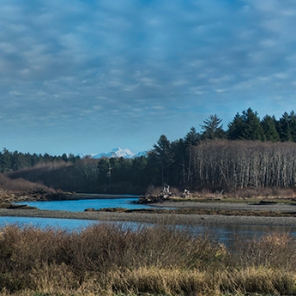 Quileute_River